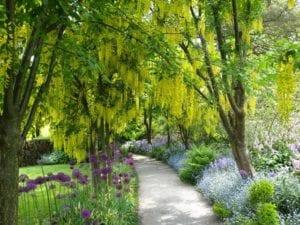 VanDusen Gardens in Vancouver, BC